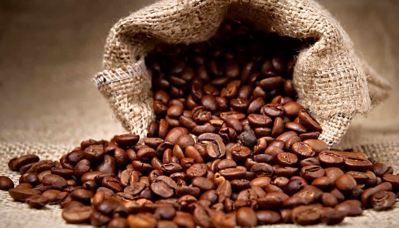 Nguyen liệu cà phê